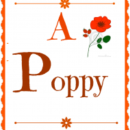 Poppy flower lampshade makeover
