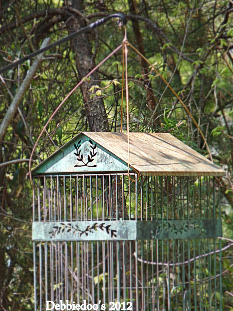 P1170409-768x1024 Shabby chic vintage bird cage