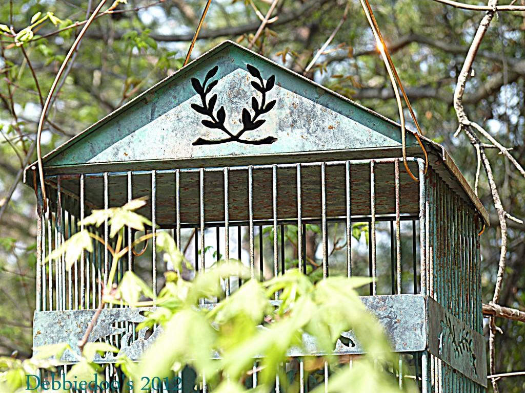 P1170410-1024x768 Shabby chic vintage bird cage