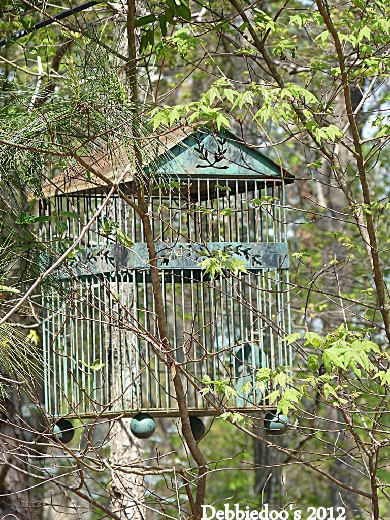 P1170419-768x1024 Shabby chic vintage bird cage