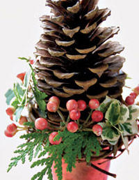 03_em-BDec04-07-Pinecone-Party-Favor_medium-2