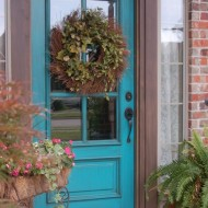 Beyond-the-Screen-Door-Turquoise-Door