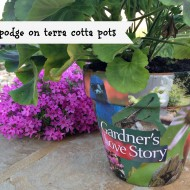 Mod podge Terra cotta pots with garden magazine clippings