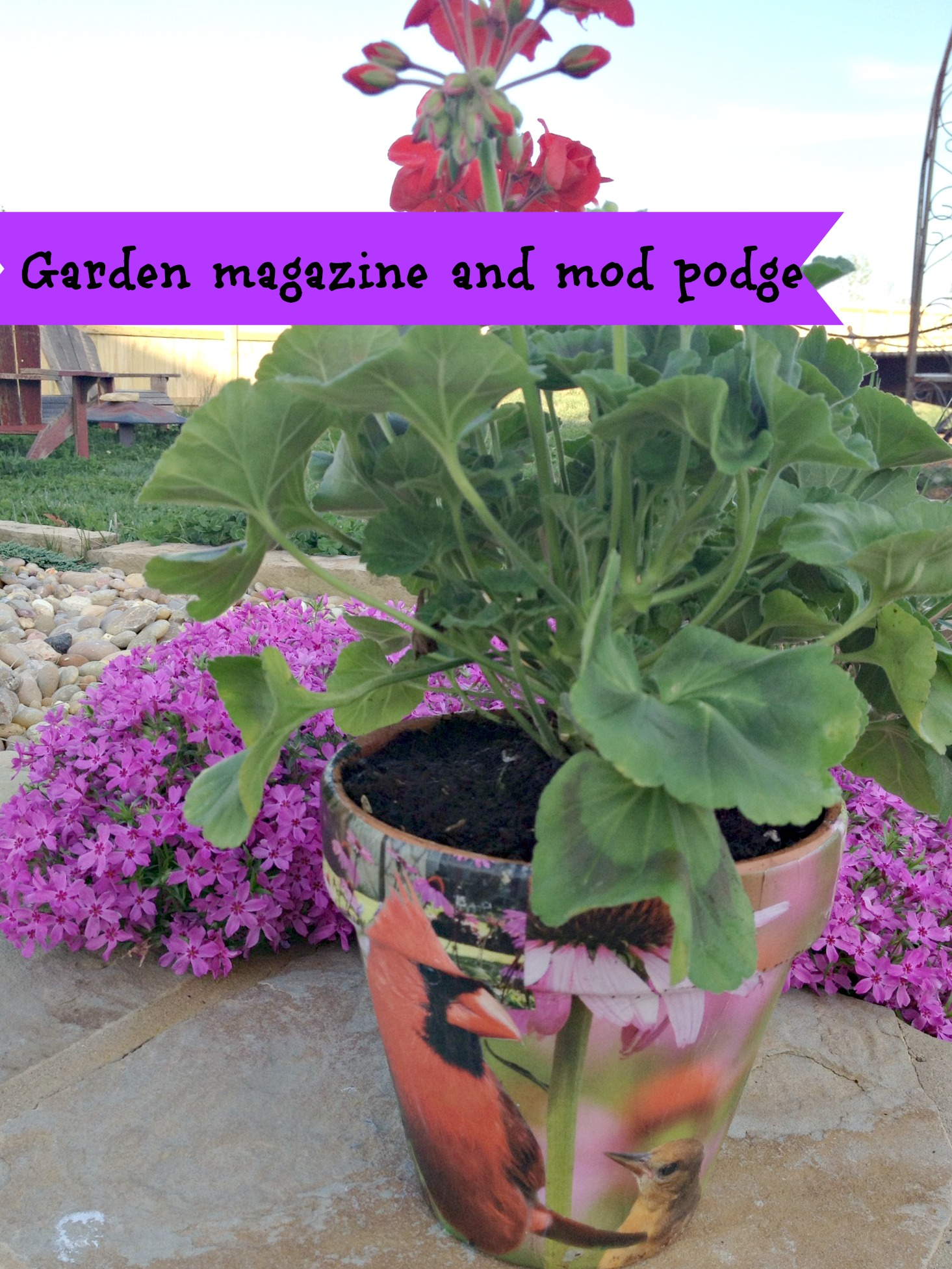 mod podge on terra cotta pots with a garden magazine clippings