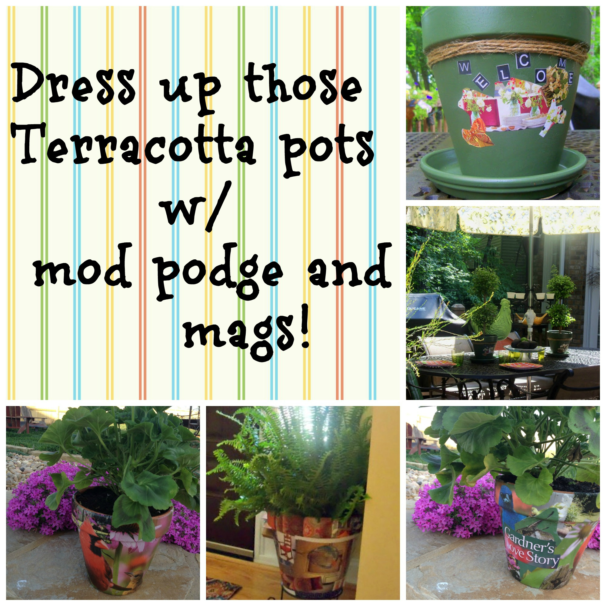 mod podge on terra cotta