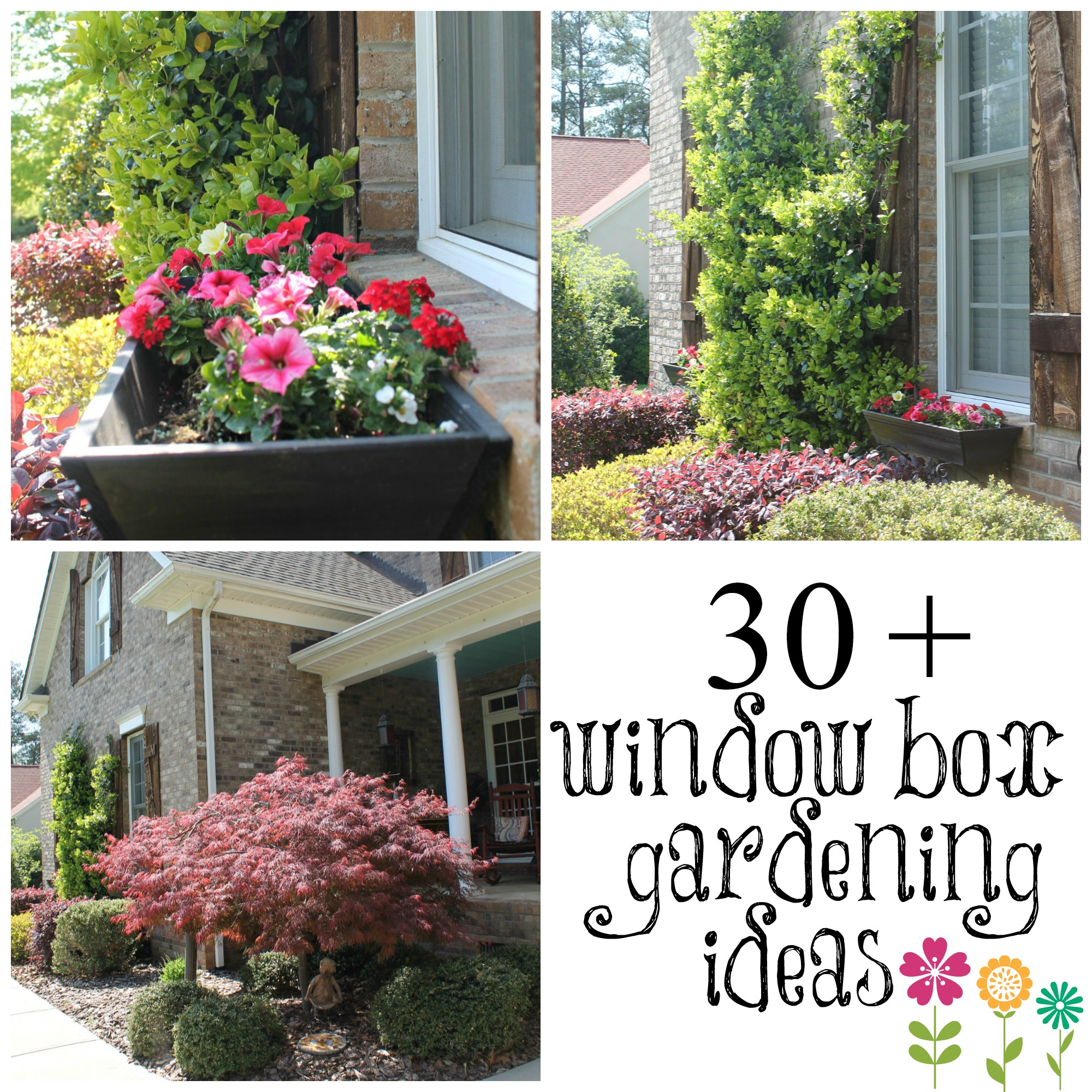 Wow your windows with window boxes debbiedoos for Flower garden box ideas