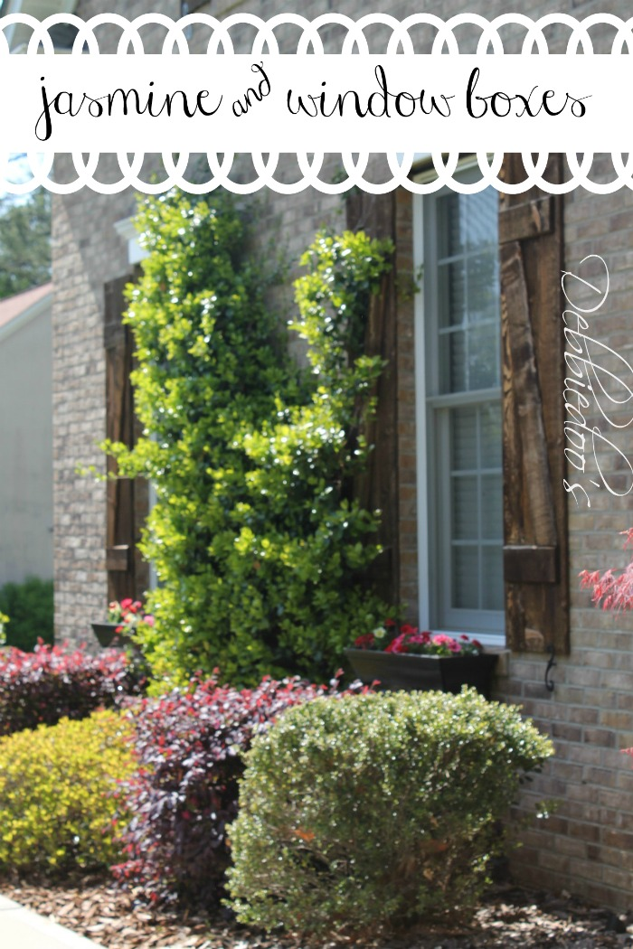 Wow Your Windows With Window Boxes Debbiedoos