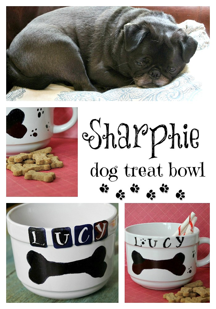 Lucy dog bowl diy sharpie