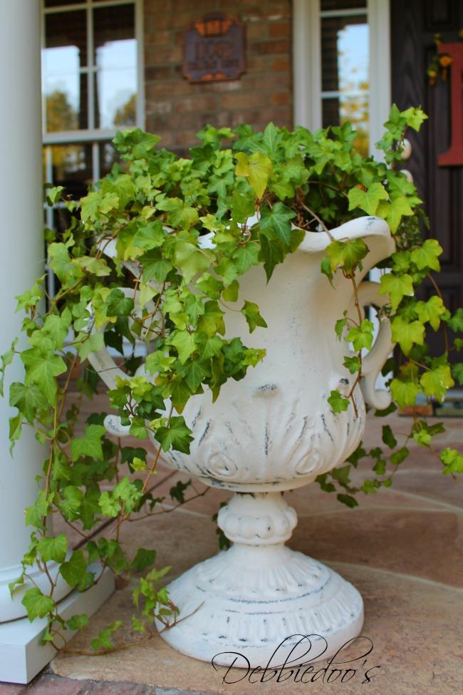 Carolina gardens 001