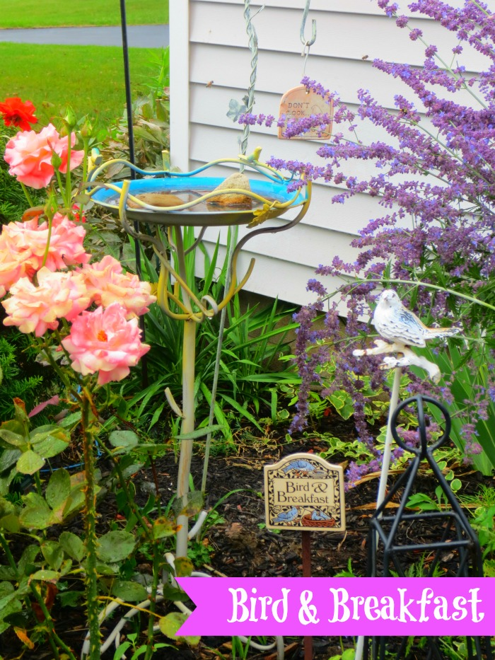 What Is A Fairy Garden?