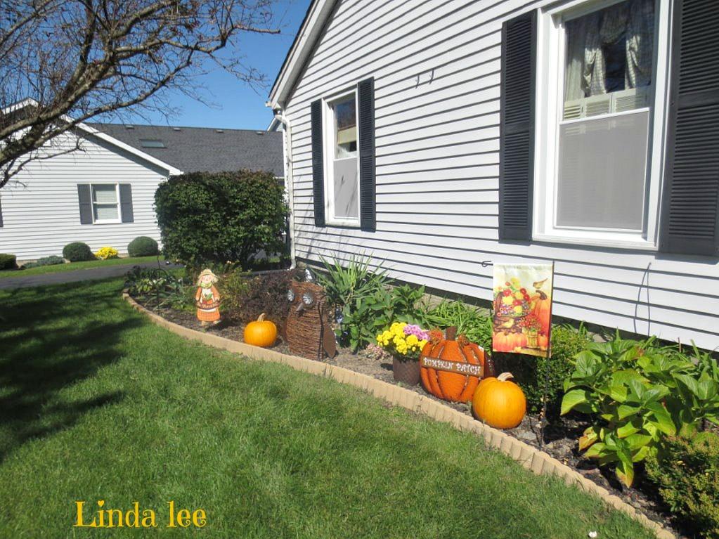 pumpkin patch gardens
