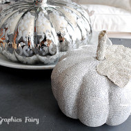 Best of the best primped pumpkins 2013