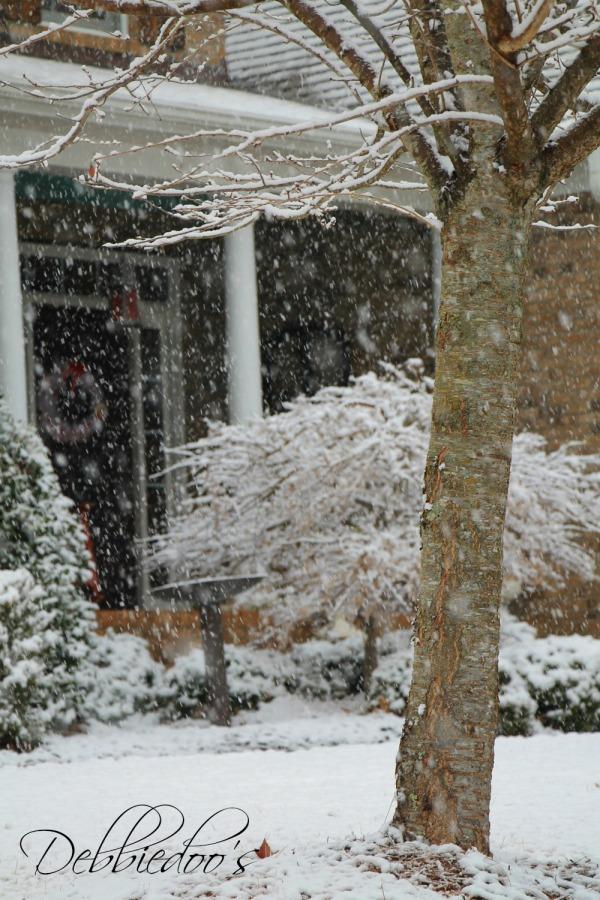 snowfall in the Carolina's