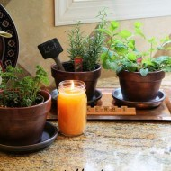 How to make summer herb terra cotta pots