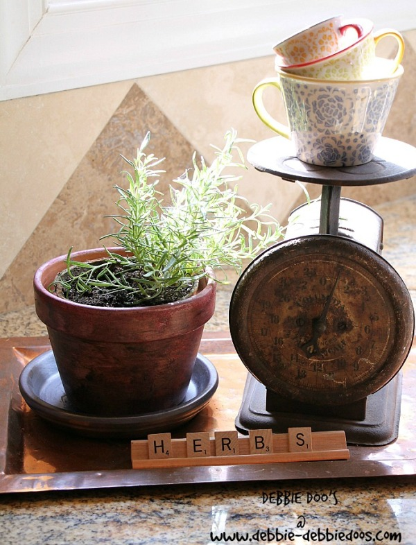 Summer herb pots with rit dye