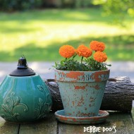 Outdoor back deck flowers and projects