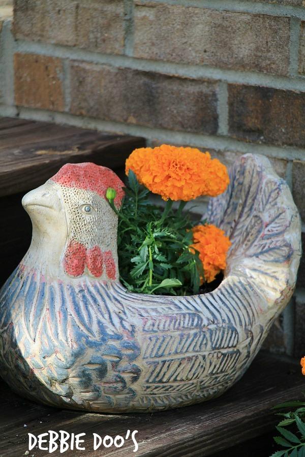 rustic outdoor rooster
