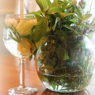 Drinking water with fresh herbs