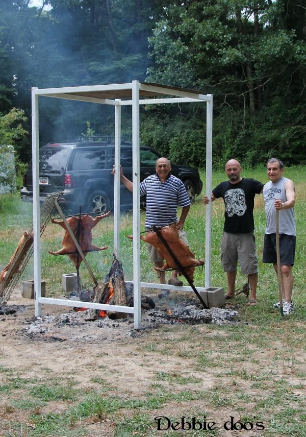 roasted pigs