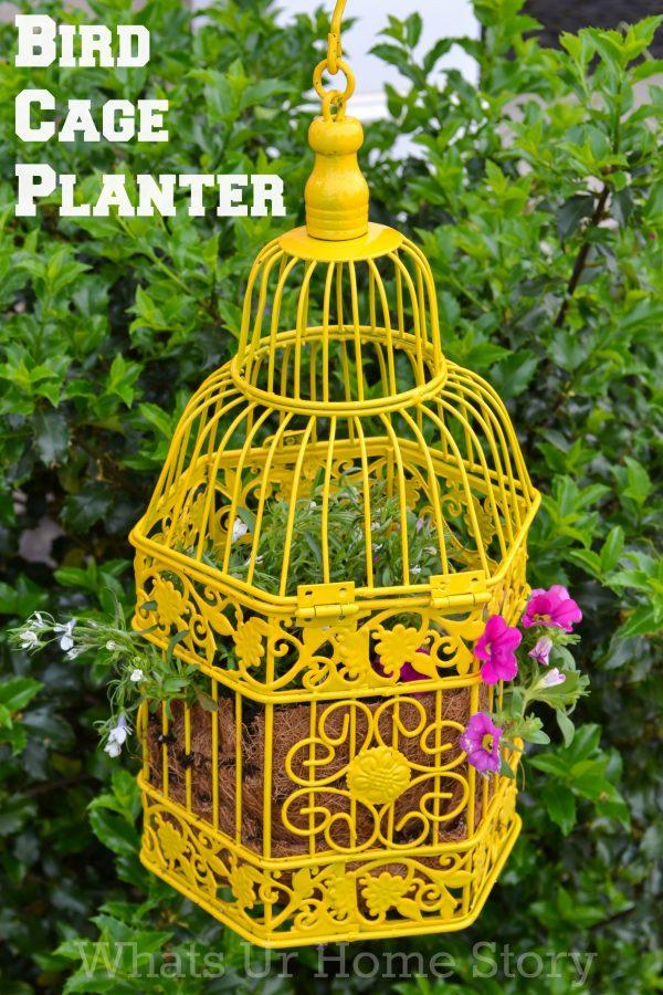 Bird-Cage-Planter