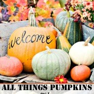 All things Pumpkin and gourds for Fall decorating
