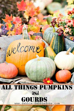 All things pumpkin and gourds decorating ideas