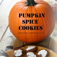 pumpkin spice cookies 017