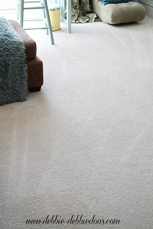 Cleaning your carpets organically