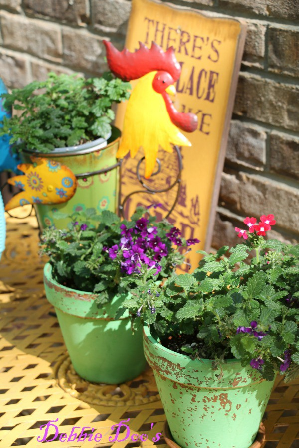 garden pot ideas