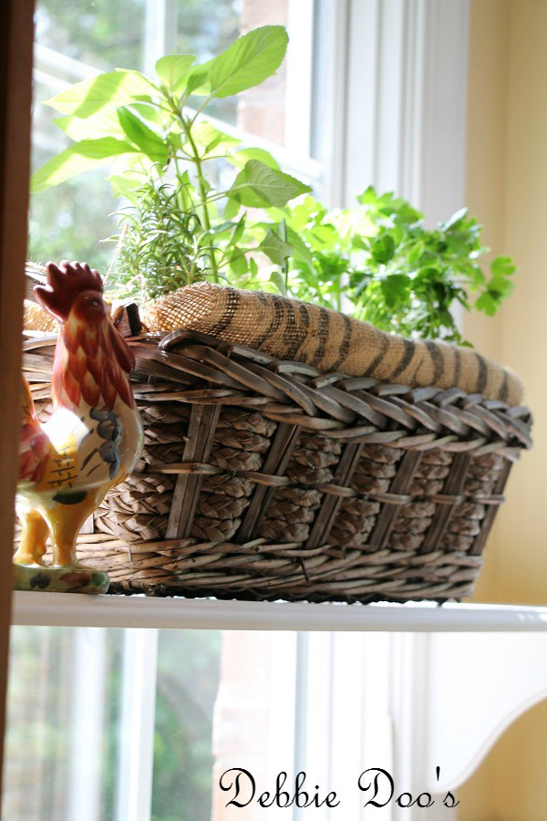 basket herb garden idea