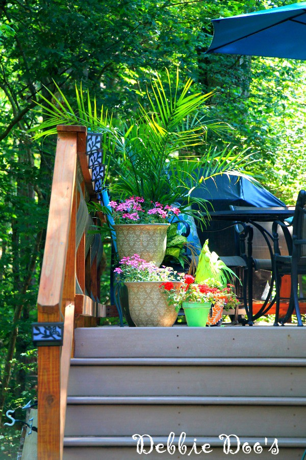 outdoor deck in the Carolina's
