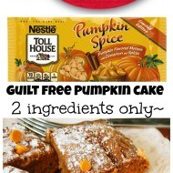 Two ingredients only low fat pumpkin cake