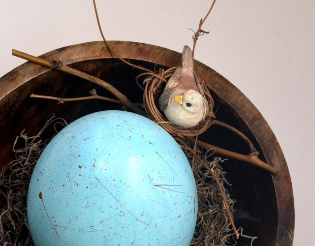 Robin egg and bird nest