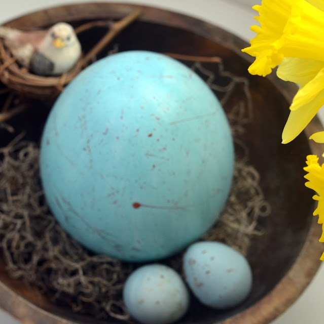 Robin egg in nest