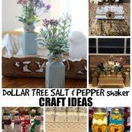 Dollar-Tree-Salt-and-Pepper-Shaker-craft-ideas